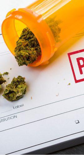 """Medical Marijuana Laws: """"Part 1"""""""